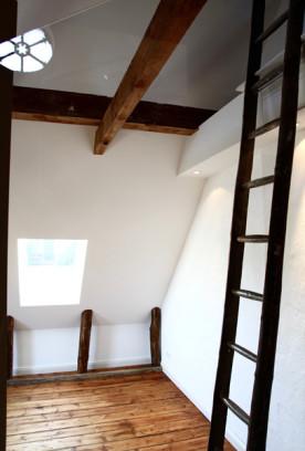 i-ja-dachbodenausbau-detail-leiter